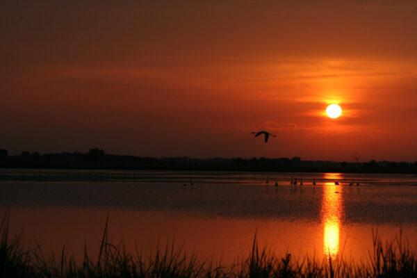 salina-cervia-tramonto