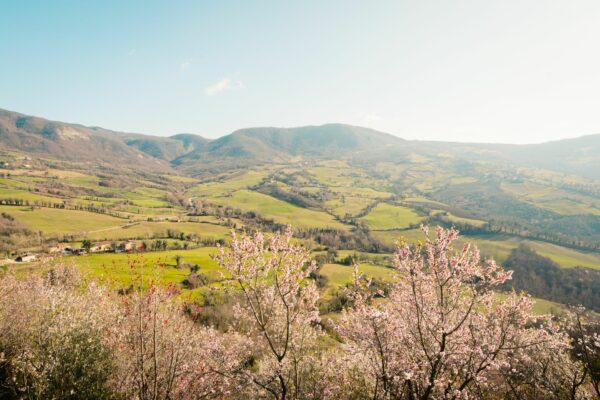 valmarecchia-in-fiore-paesaggio-pennabilli